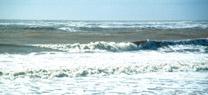 La Junta agilizará los trámites para que el Gobierno central pueda acometer cuanto antes las obras de regeneración de las playas