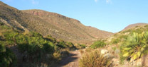 La Junta muestra el vulcanismo de Parque Natural Cabo de Gata-Níjar en una ruta por 'Majada Redonda'