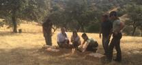 Medio Ambiente suelta más de 4.300 perdices rojas durante este año para repoblaciones en distintas zonas de la provincia
