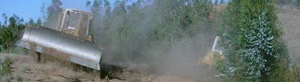 La Junta adjudica tratamientos selvícolas mecanizados para  prevenir incendios forestales por valor de 4,9 millones de euros