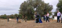 Medio Ambiente libera en Doñana un lince ibérico para propiciar el refuerzo genético de la población en el espacio natural