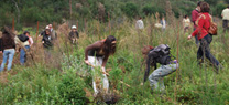 La Junta subvenciona 29 proyectos de educación ambiental para la conservación y protección del medio ambiente