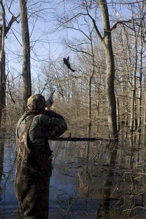 Publicada la oferta pública de caza relativa a permisos para la temporada 2019-2020 en terrenos gestionados por la Junta