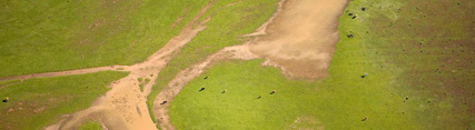 Imagen aérea de Doñana
