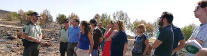La Junta acometerá los trabajos de restauración necesarios por los incendios de Beas y Terque tras los estudios pertinentes