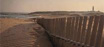 Las jornadas sobre instrumentos y herramientas de gestión del litoral andaluz llegan a Conil y Algeciras en abril