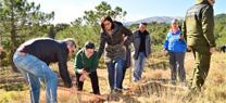 La Sierra de Baza, escenario de una reforestación participativa con alumnado del IES Alcrebite