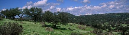 Seis parques naturales andaluces renuevan la Carta Europea de Turismo Sostenible para promover el desarrollo socioeconómico