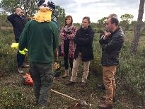 Medio Ambiente invertirá 12,6 millones de euros en prevención de incendios forestales en Huelva
