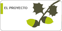 Ficha del proyecto Life Biodehesa