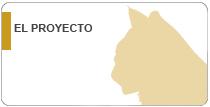Ficha del proyecto Recuperación de la población del lince ibéico en Andalucía
