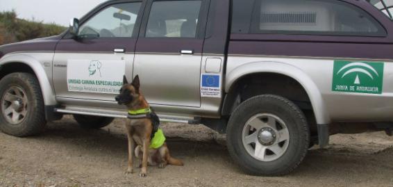 Unidad canina especializada