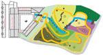Mapa Jardín Micológico La Trufa