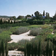 Jardín Botánico 'La Alcaidesa'