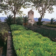 Jardín Botánico 'Rodalquilar'