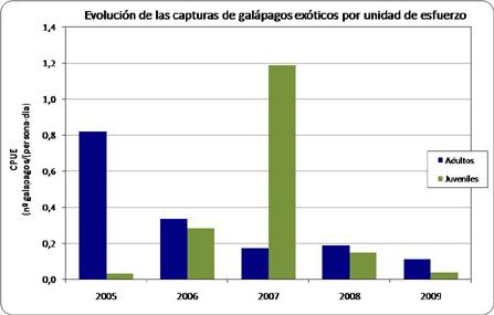 Galápagos exóticos :: Consejería de Medio Ambiente y Ordenación ...