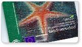 Enlace a Estrategia Andaluza de Gestión Integrada de la Biodiversidad