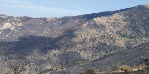 Area afectada por el incendio forestal de Sierra Nevada, 22-24 de septiembre de 2005