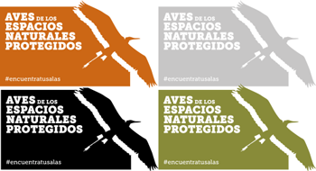 Día Mundial de las Aves. Octubre 2016