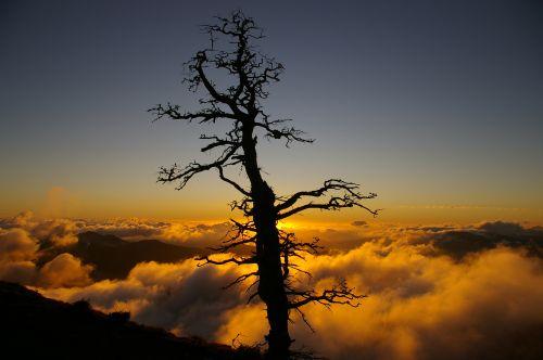 Atardecer en Sierra de las Nieves. Autor: Carlos Tapia Moya
