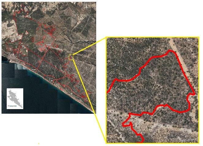 Ortofotografía aérea del PNOA de alta resolución (0,5m), 2016