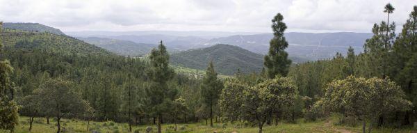 Monte Torilejos, Hornachuelos