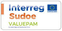 Proyecto VALUEPAM