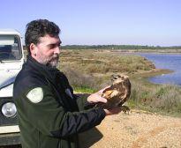 Agente colaborando en la captura y marcaje de aves