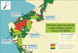 Amplia a nueva ventana: Ejemplo de potencialidad de conexión de los hábitats de camaleón entre diferentes parcelas de Sanlucar, Chipiona y Rota
