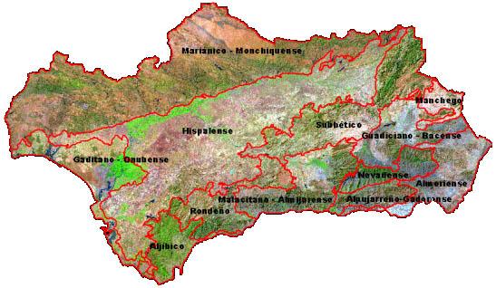 Ajuste de las unidades biogeográficas sobre la imagen de satélite Landsat