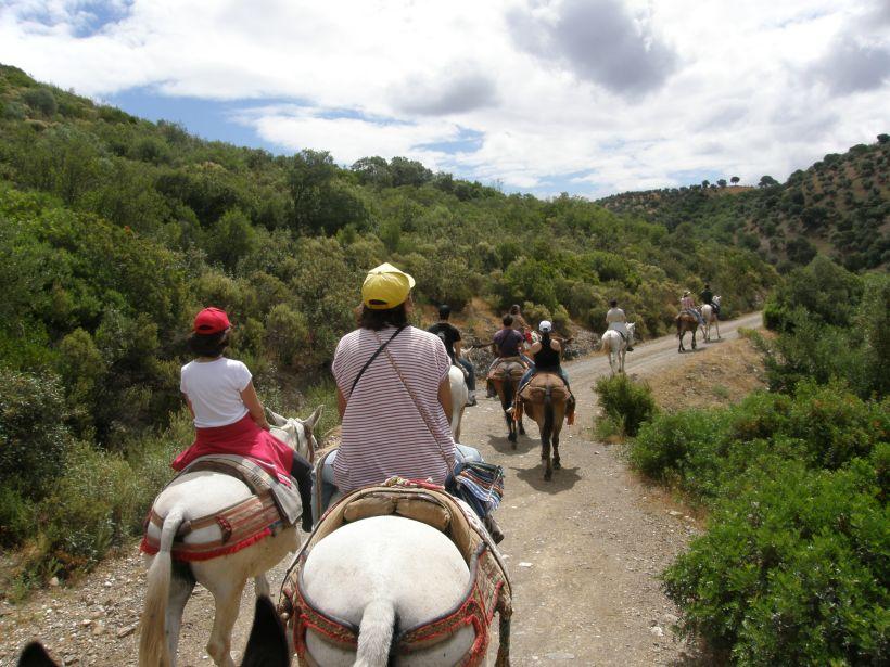 Parque natural sierra de cardeña y Montoro