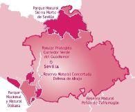 Mapa de la provincia de Sevilla