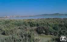 Laguna de Fuente