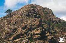 Peridotitas de Sierra Bermeja