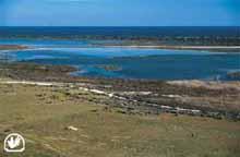 Albufera de Punta Entinas - Sabinar