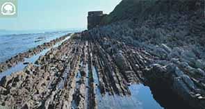 Turbidtas calcáreas (flysch) en las cercanías de Algeciras