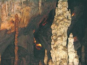 Cueva de los Murciégalos