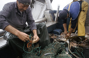 Pescadores en su barco.