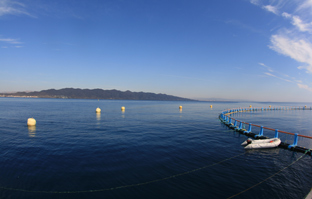 Instalación de acuicultura en la costa andaluza.