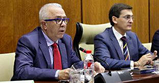 Sánchez Maldonado, durante su comparecencia en comisión parlamentaria.