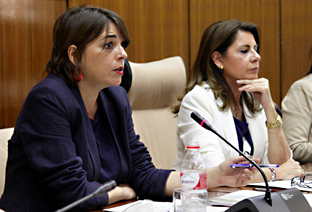 Elena Corts, durante su comparecencia en la comisin de Fomento y Vivienda.