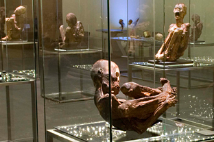 Momias, testigos del pasado