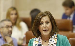 La consejera de Igualdad ha detallado la inversión de la Junta en el servicio de Ayuda a Domicilio en 2017 durante la sesión de control al Gobierno.