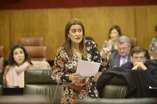 La consejera Sonia Gaya en su intervención en el Pleno parlamentario.