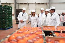 La presidenta de la Junta visitó la cooperativa de productores del campo de Alcalá del Río.