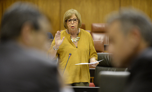 Adelaida de la Calle se dirige al pleno del Parlamento durante la sesión de control al Gobierno.