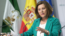 Sánchez Rubio expone la Ley de Voluntariado que regulará la participación de los menores y las modalidades vinculadas a las nuevas tecnologías