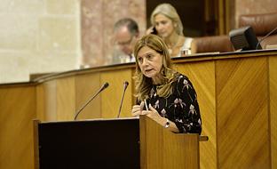 Marina Álvarez, desde la tribuna del salón del pleno del Parlamento, durante la interpeleación sobre atención primaria.