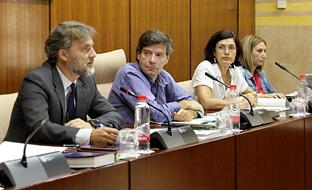 José Fiscal, en la Comisión de Medio Ambiente y Ordenación del Territorio del Parlamento.