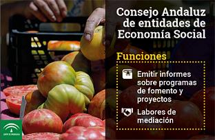 Animación sobre la creación del Consejo Andaluz de Entidades de Economía Social